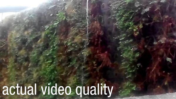 lenovo a850 video