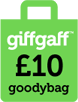 10-goodybag